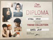 Sirbu Ioana – Diploma Wella Bacau 2018