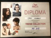 Mihaela Tifui Diploma 2018 1